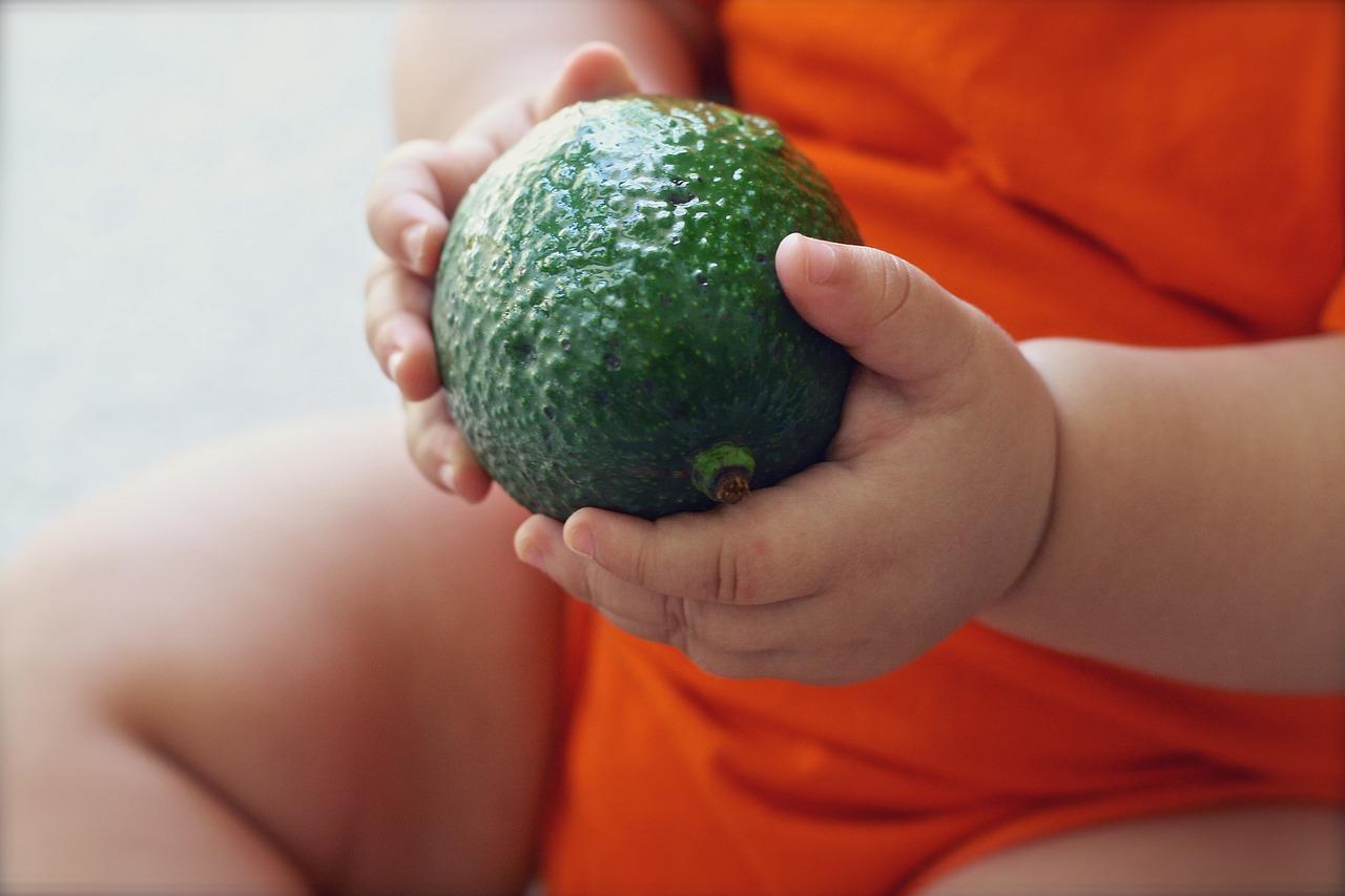 mode de vie vegan pour enfant ?