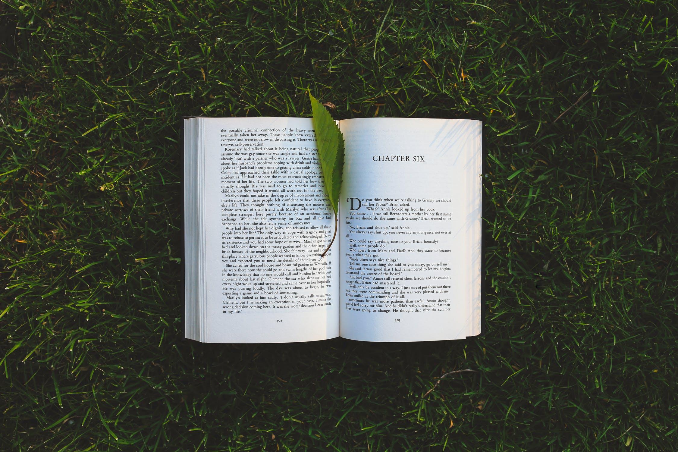 livre et littérature