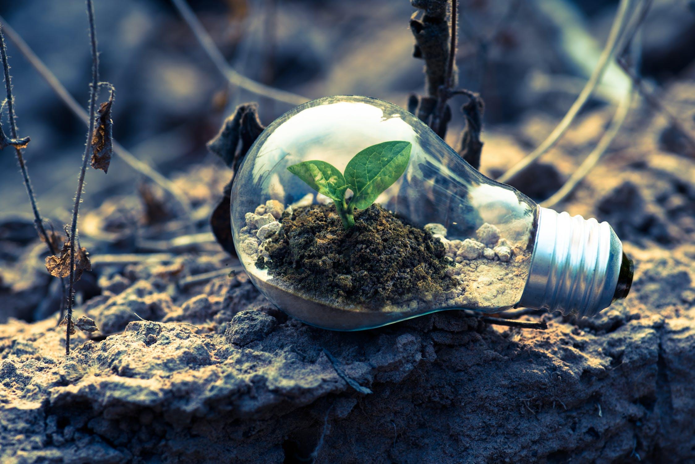 La cité fertile se veut eco-friendly
